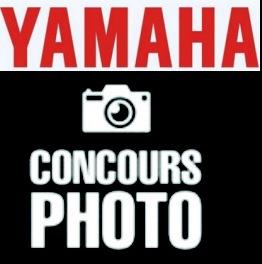 YAM PHOTO